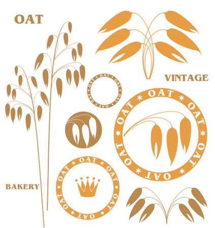 oat: Oat Illustration