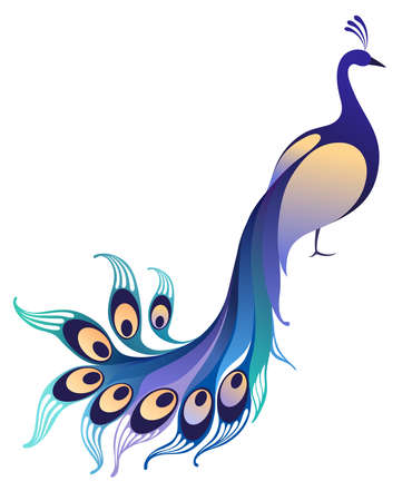 graceful: Peacock