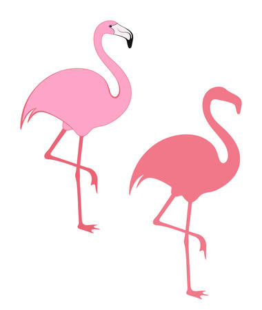 flamenco ave: Flamingo Vectores