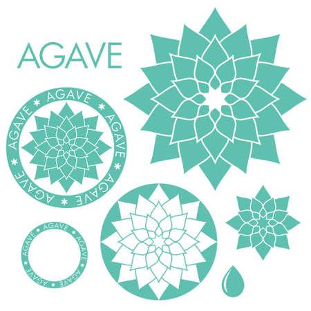 agave: Ilustraciones Agave