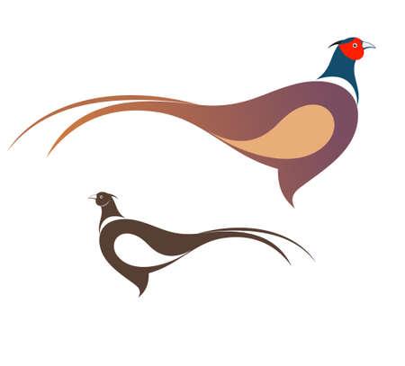Pheasant icône Banque d'images - 31364152