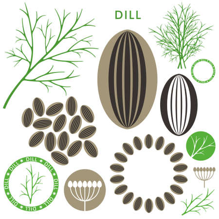 fennel seeds: Dill icon