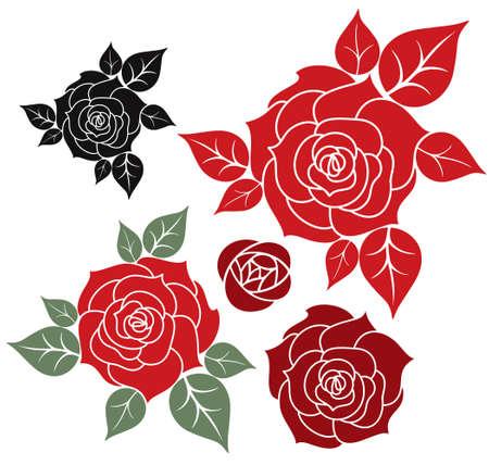 red rose black background: Red Rose Illustration