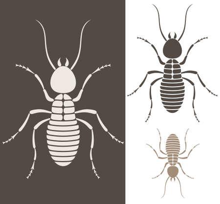 termite: Termite illustration  Illustration