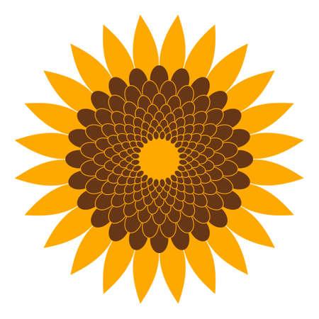 sunflower seeds: Sunflower illustration