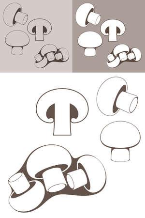 edible mushroom: Edible Mushroom. Champignon