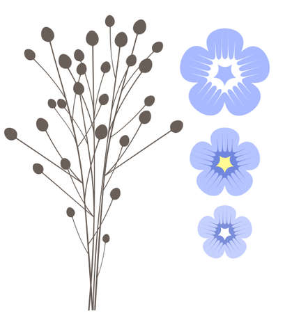 flax: Flax flower Illustration