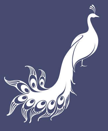 White peacock  イラスト・ベクター素材