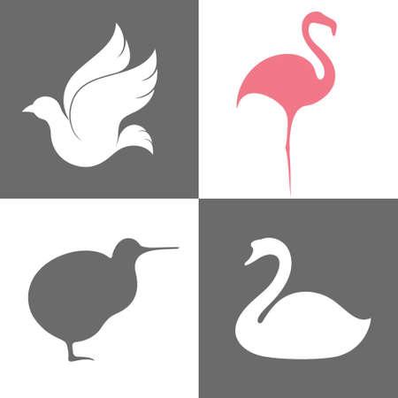 flamenco ave: Bird. Icon Set Vectores