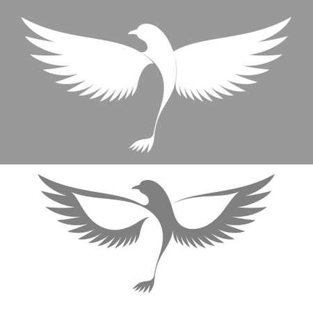 paloma de la paz: Paloma Vectores