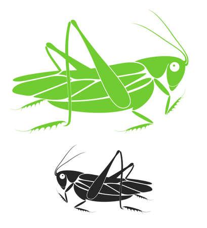locust: Locust