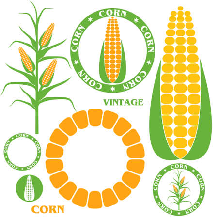 corn crop: Corn. Set