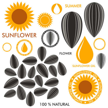 oil crops: Sunflower