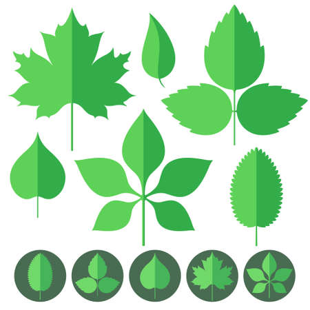 Leaf. Icon Set Vector