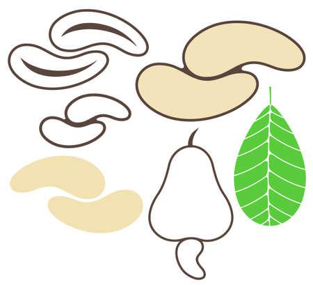 cashews: Cashews