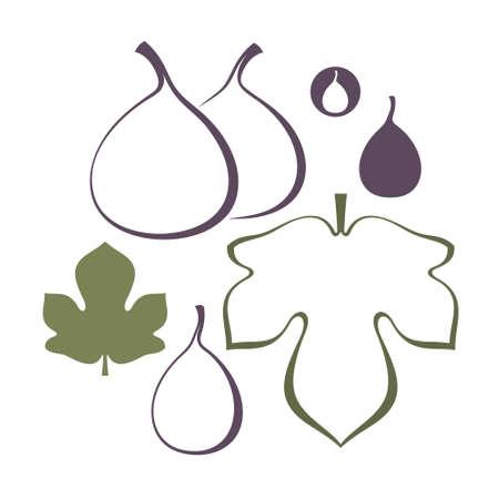 Fig. Set Illustration