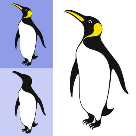 emperor: Emperor penguin Illustration