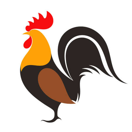 chicken: Rooster Illustration