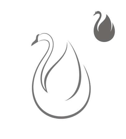 cisnes: Cisne Vectores
