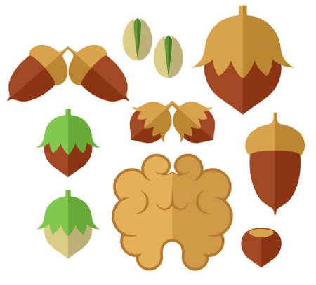 acorn: Nuts. Icon set