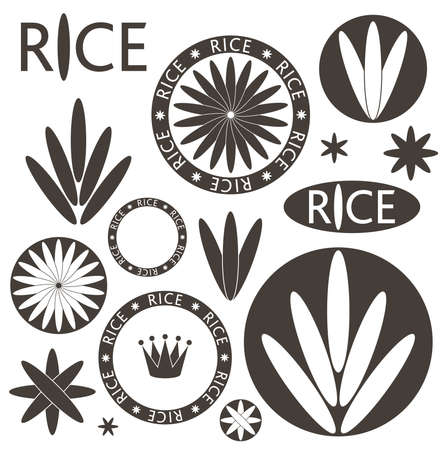 brown rice: Rice. Set Illustration