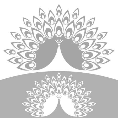 pluma de pavo real: Resumen de pavo real
