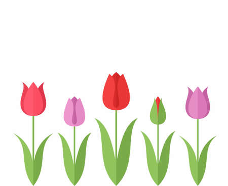 Tulp. Set Stock Illustratie