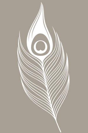 pluma de pavo real: Pavo real blanco. Pluma Vectores