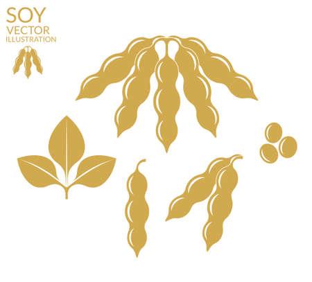 Soybean 版權商用圖片 - 38330028