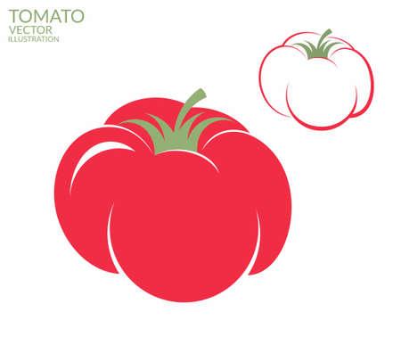 Tomato. Vector