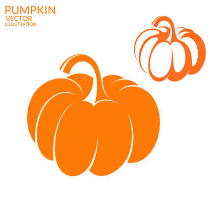 halloween pumpkin: Pumpkin Illustration