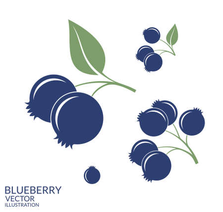 Blueberry. Set