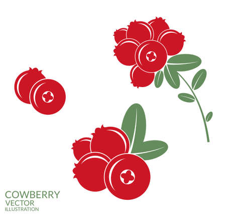 whortleberry: Cowberry