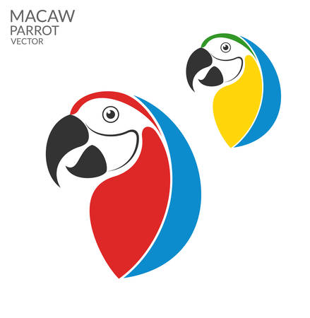 macaw: Parrot. Macaw