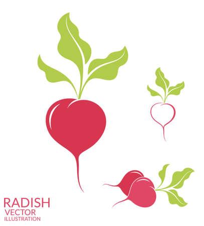 radish: Radish. Set