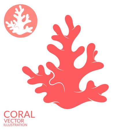 Coral 일러스트