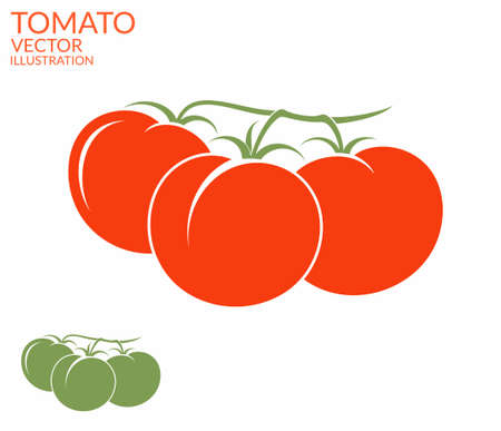 tomates: Tomate. Rama Vectores