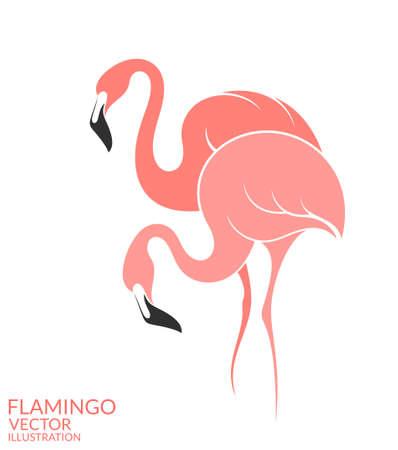 Flamingo Иллюстрация