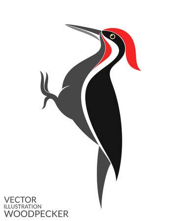 knock: Woodpecker
