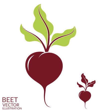 root vegetables: Beet
