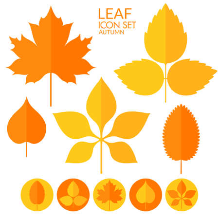 nettle: Leaf. Icon set
