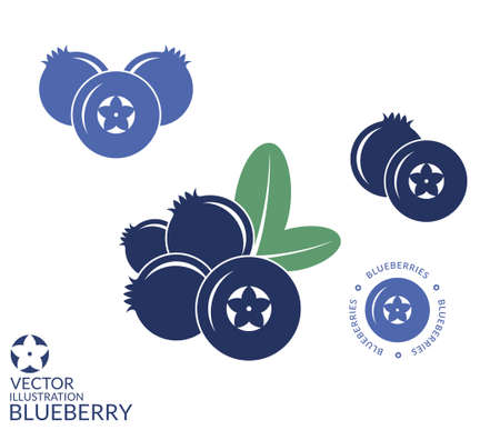 Blueberry Ilustração