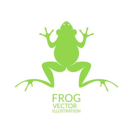 Frog 向量圖像
