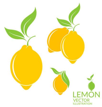 frescura: Limón. Frutas aisladas sobre fondo blanco