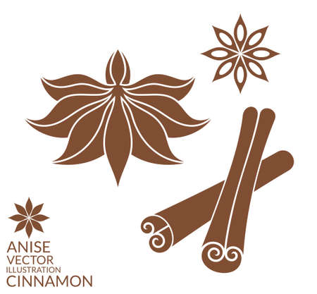 anise: Cinnamon. Anise. Isolated on white background Illustration