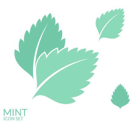 Mint. Icon set. Isolated leaves on white background