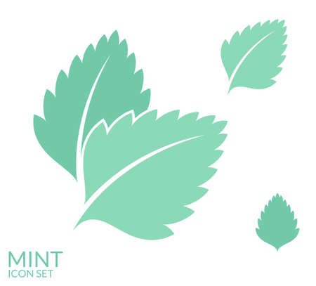 mint: Mint. Icon set. Isolated leaves on white background
