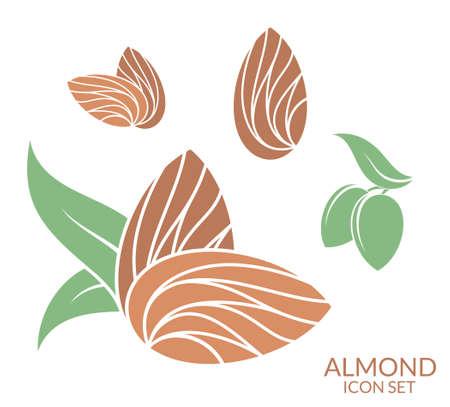 Almond. Icon set. Isolated fruit on white background