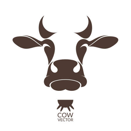 cow head: Cow. Isolated animal on white background