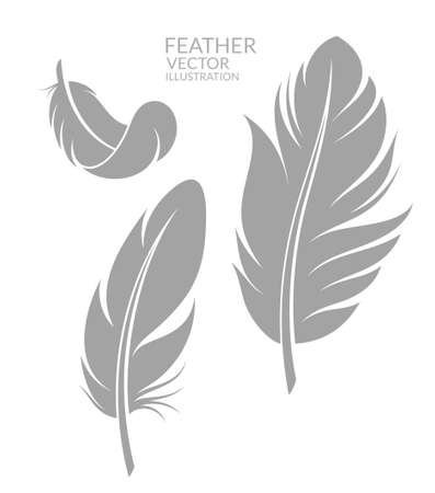goose: Feather. Set